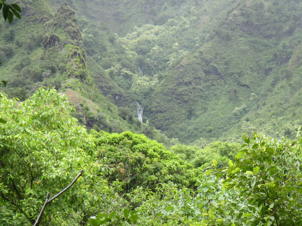 Waimakemake Falls